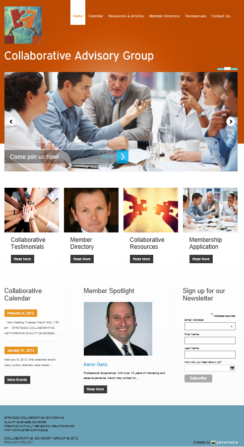Collaborative Advisory Group website